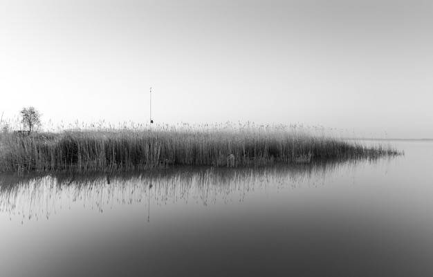 Scatto in scala di grigi di una piccola isola con molta erba che si riflette sul mare