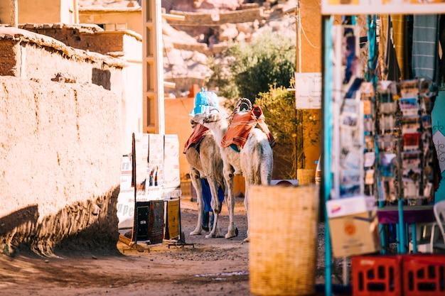 Scena di strada a marrakech