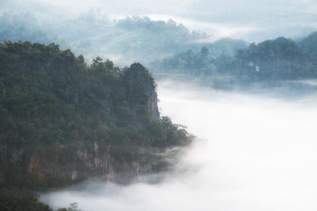 Scenica valle nebbiosa all'alba