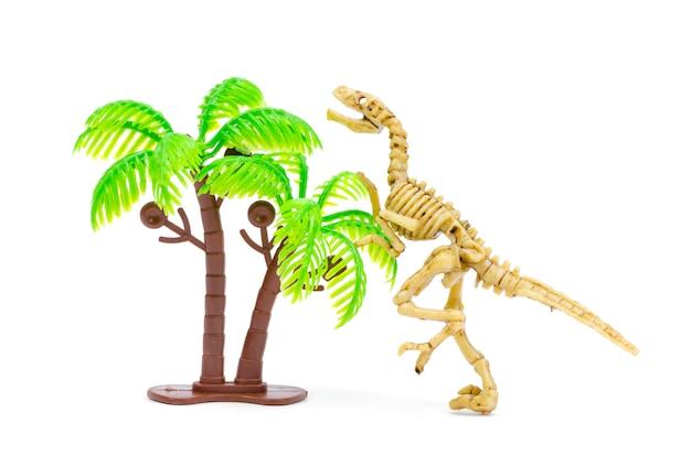 Scheletro di dinosauro per l'educazione scientifica