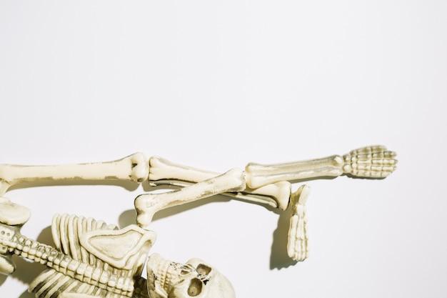 Scheletro sdraiato con la mano e le gambe