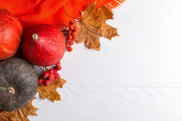 Scialle caldo arancio luminoso, zucche, bacche e foglie gialle asciutte su un fondo bianco, umore di autunno, copyspace.