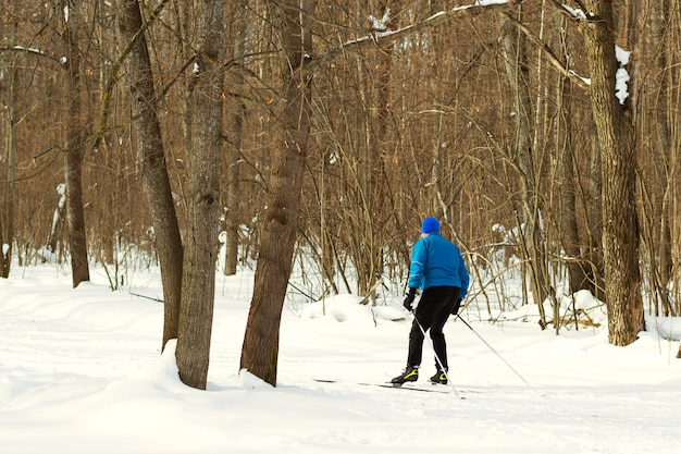 Sciare nella splendida foresta invernale al mattino.