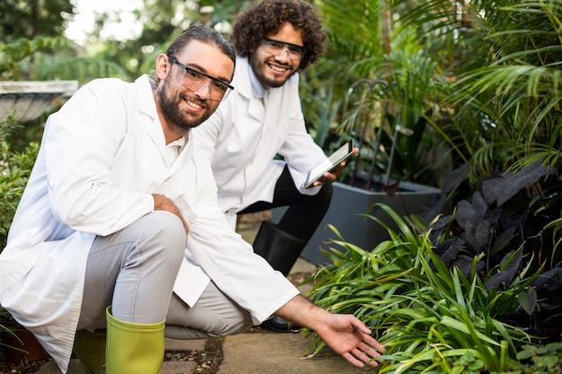 Scienziati maschii felici che ispezionano le piante