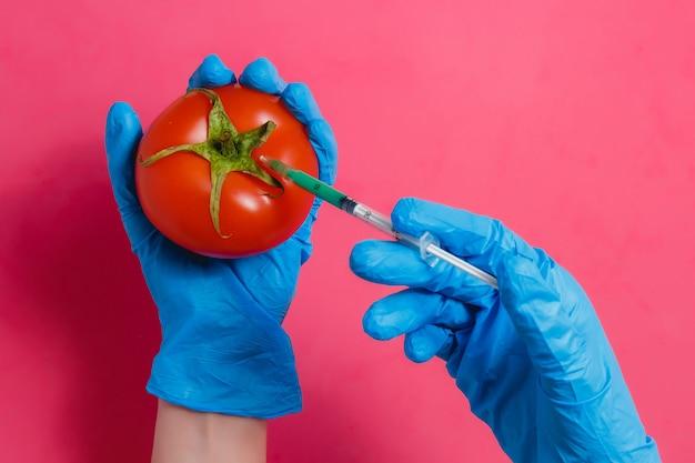 Scienziato ogm iniezione di liquido verde dalla siringa al pomodoro rosso