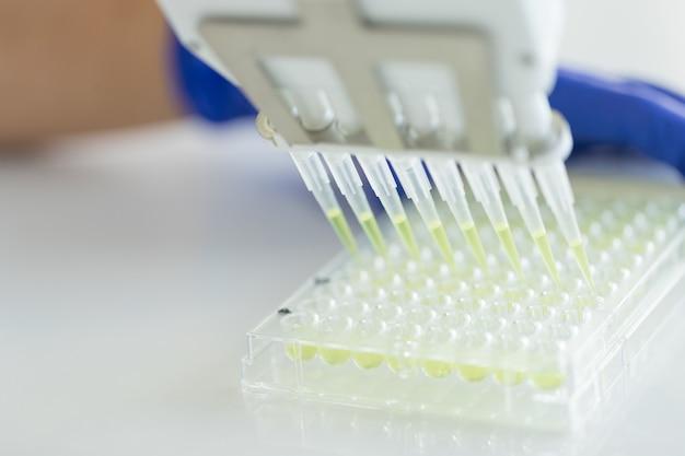 Scienziato utilizzando pipetta multicanale e piastra multiwell eppendorf in laboratorio