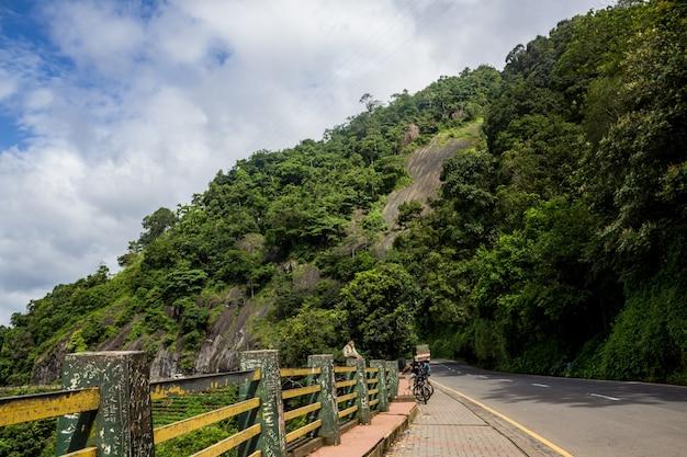 Scimmia seduta sul lato di una strada pubblica con alta collina sullo sfondo