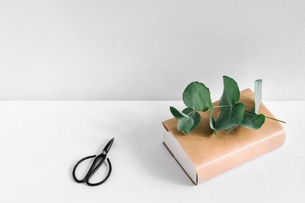 Scissor e libro e ramoscello sul tavolo bianco contro sfondo grigio