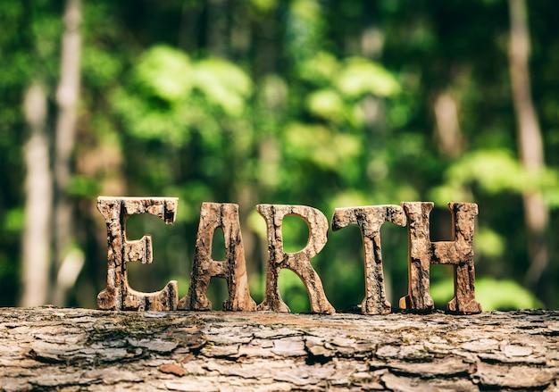 Scrittura della terra fatta da lettere di legno nella foresta