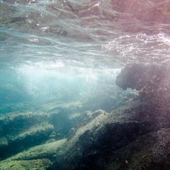 Scuola di pesce che nuota sott'acqua, bartolome island, isole galapagos, ecuador