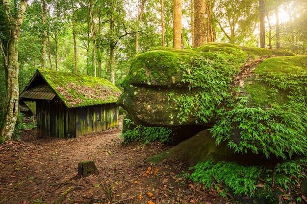 Scuola politica e militare della vecchia capanna verde di legno al parco nazionale nakhon di phuhinrongkla