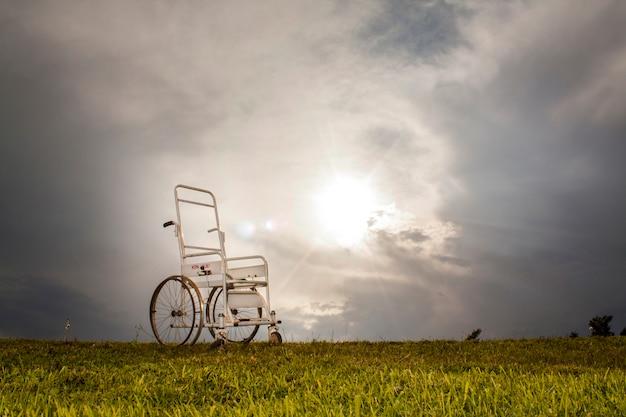Sedia a rotelle nel prato