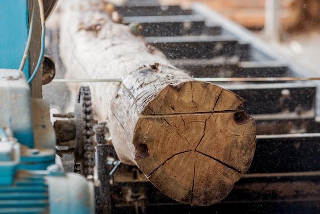 Segheria moderna. seghe industriali da tronchi