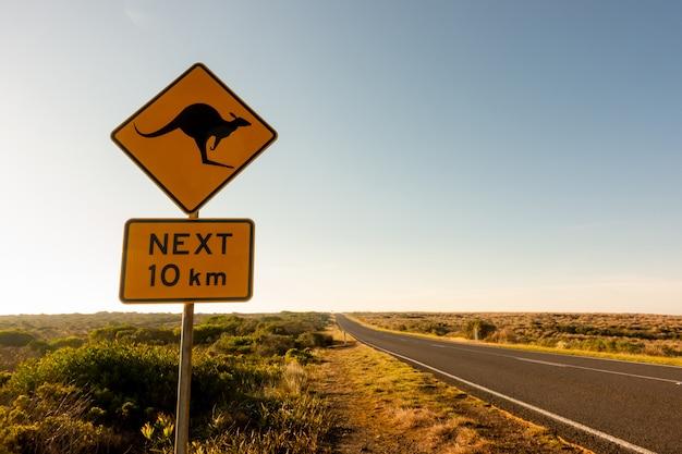 Segnale stradale dell'incrocio del canguro