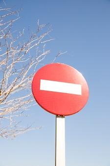 Segnale stradale di arresto rosso davanti all'albero ed al cielo blu nudi