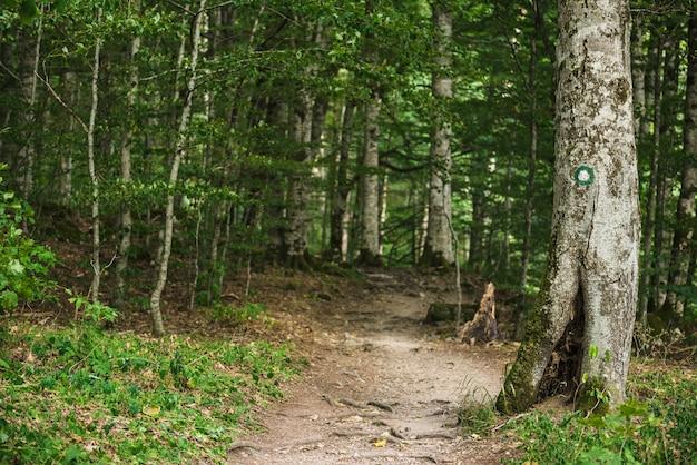Segnavia per escursionisti