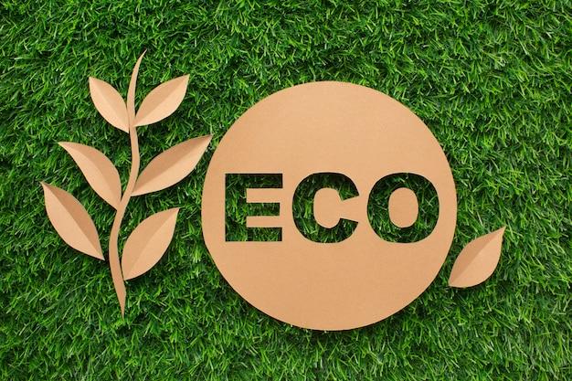 Segno di ecologia e della foglia su erba