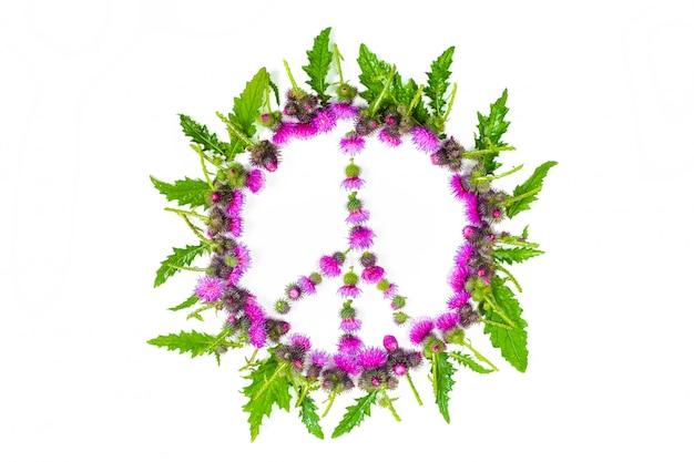 Segno di pace (pacifico) - un simbolo di pace, disarmo e movimento contro la guerra, fiancheggiato da foglie e delicati fiori rosa sbocciato thistle.