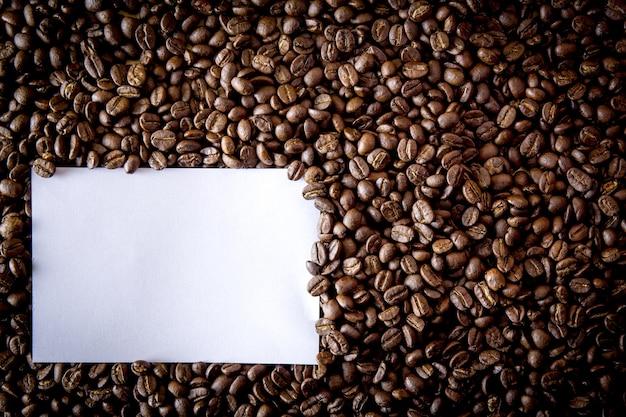 Seme di caffè su fagioli e carta bianca vuota