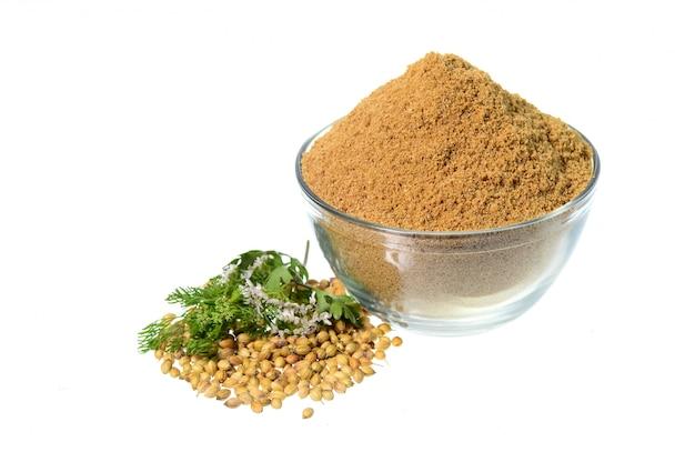 Semi di coriandolo, coriandolo fresco e coriandolo in polvere isolati su fondo bianco.