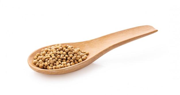 Semi di coriandolo in cucchiaio di legno su fondo bianco