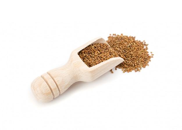 Semi di erba medica o medicago in cucchiaio di legno isolato su sfondo bianco vista dall'alto.