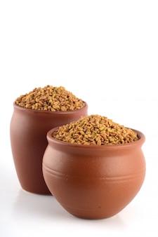Semi di fieno greco in vaso di argilla isolato