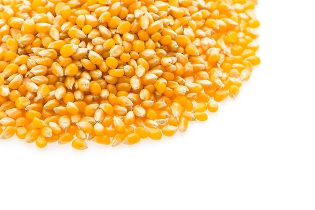 Semi di pannocchia di mais