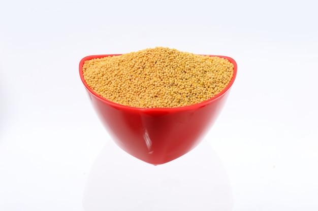 Semi di senape gialli in ciotola rossa isolata su fondo bianco