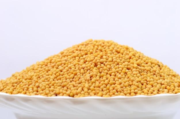 Semi di senape gialli in zolla isolata