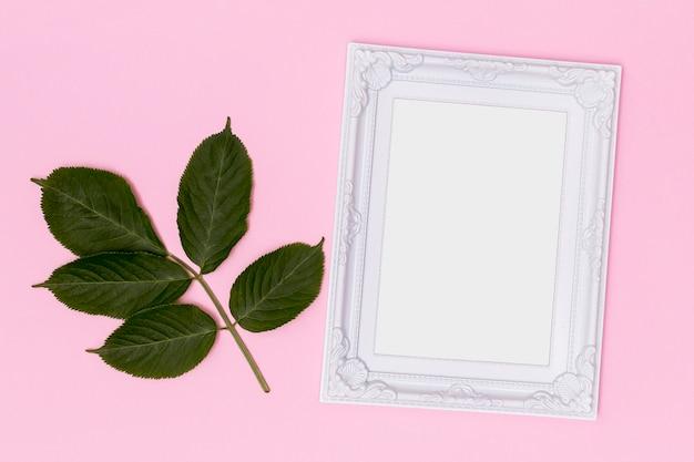 Semplicistico telaio vuoto con ramoscello di foglie