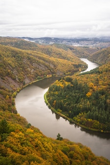 Sentiero degli alberi saarschleife sotto un cielo nuvoloso durante l'autunno in germania