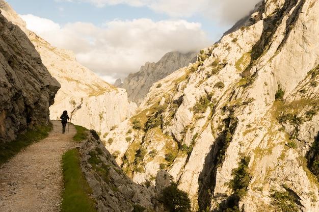 Sentiero nella gola del fiume cares, picos de europa tra asturie e leon.