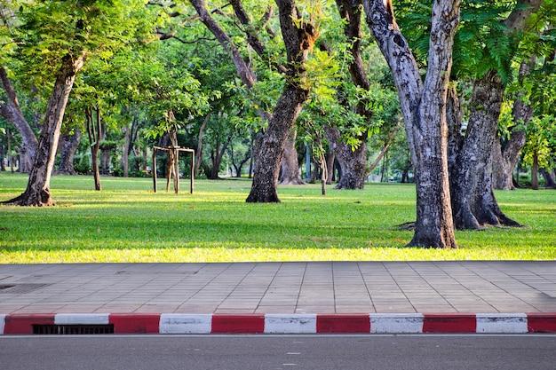 Sentiero per pedoni su parco pubblico e alberi