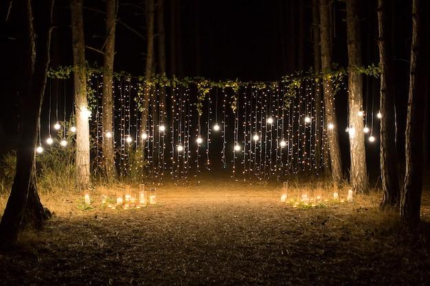 Serata di cerimonia nuziale con candele e lampade nella pineta di conifere