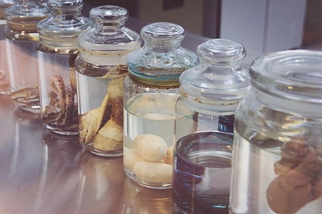 Serpenti in un laboratorio di scienze