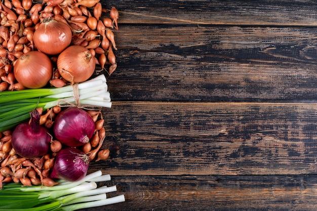 Set di cipolle rosse, scalogni, cipollotti o scalogno e cipolle su un tavolo di legno scuro. vista dall'alto.