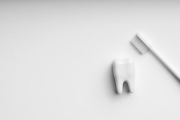 Set di cura dentale e spazzolino da denti di colore bianco e monotono per un concetto pulito