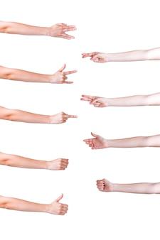 Set di mani in diversi gesti su sfondo bianco
