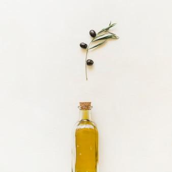Set di rami di ulivo e bottiglia con olio