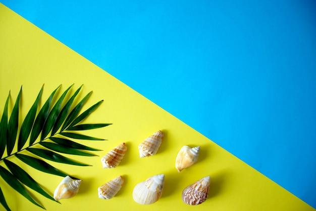 Set piatto creativo di conchiglie e foglia di palma con spazio per il testo su sfondo blu e giallo. concetto di vacanze estive. sfondo estivo con copia spazio.