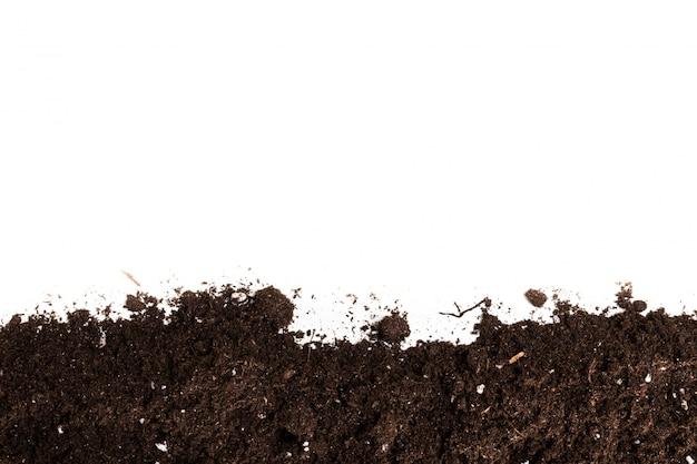Sezione del suolo o della sporcizia isolata su superficie bianca