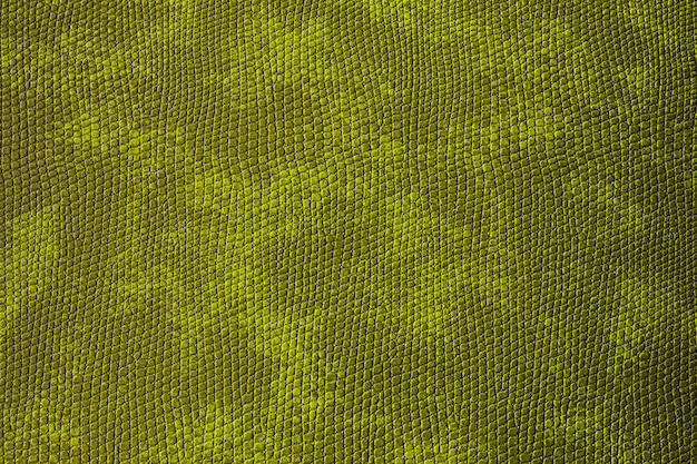 Sfondo astratto materiale maculato verde