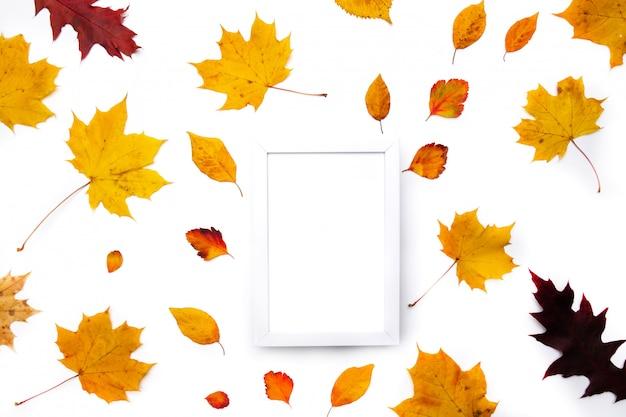 Sfondo autunnale. le foglie. foglie di acero su sfondo bianco. vista piana, vista dall'alto. copia spazio per promozioni e sconti stagionali.
