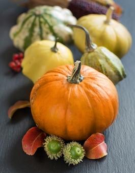 Sfondo autunno con zucche su un tavolo grigio da vicino