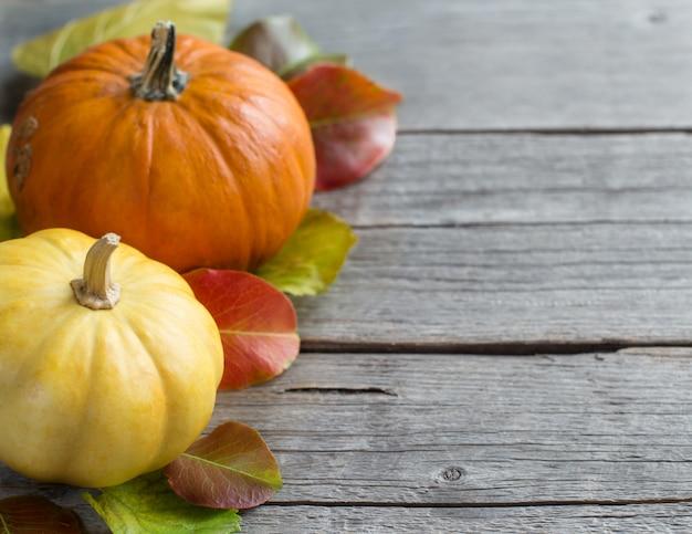 Sfondo autunno con zucche su un tavolo in legno grigio si chiuda