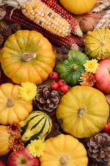 Sfondo autunno con zucche, vista dall'alto.