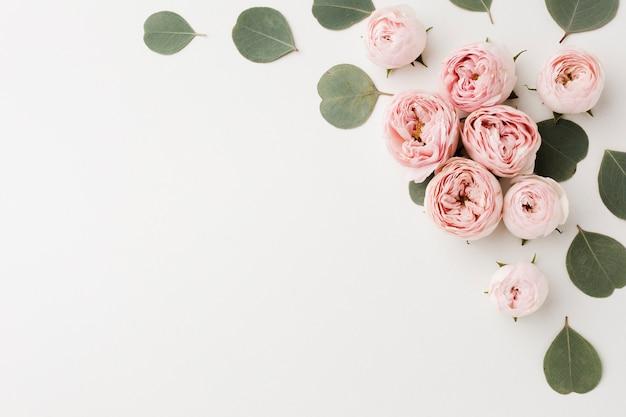 Sfondo bianco spazio copia con rose e foglie