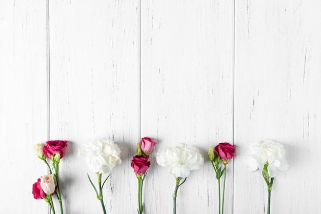 Sfondo con garofani e rose. copia spazio