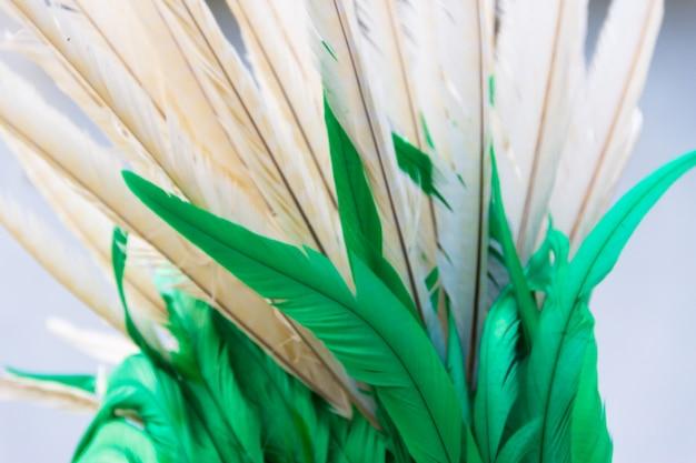 Sfondo con texture colorate piume di carnevale